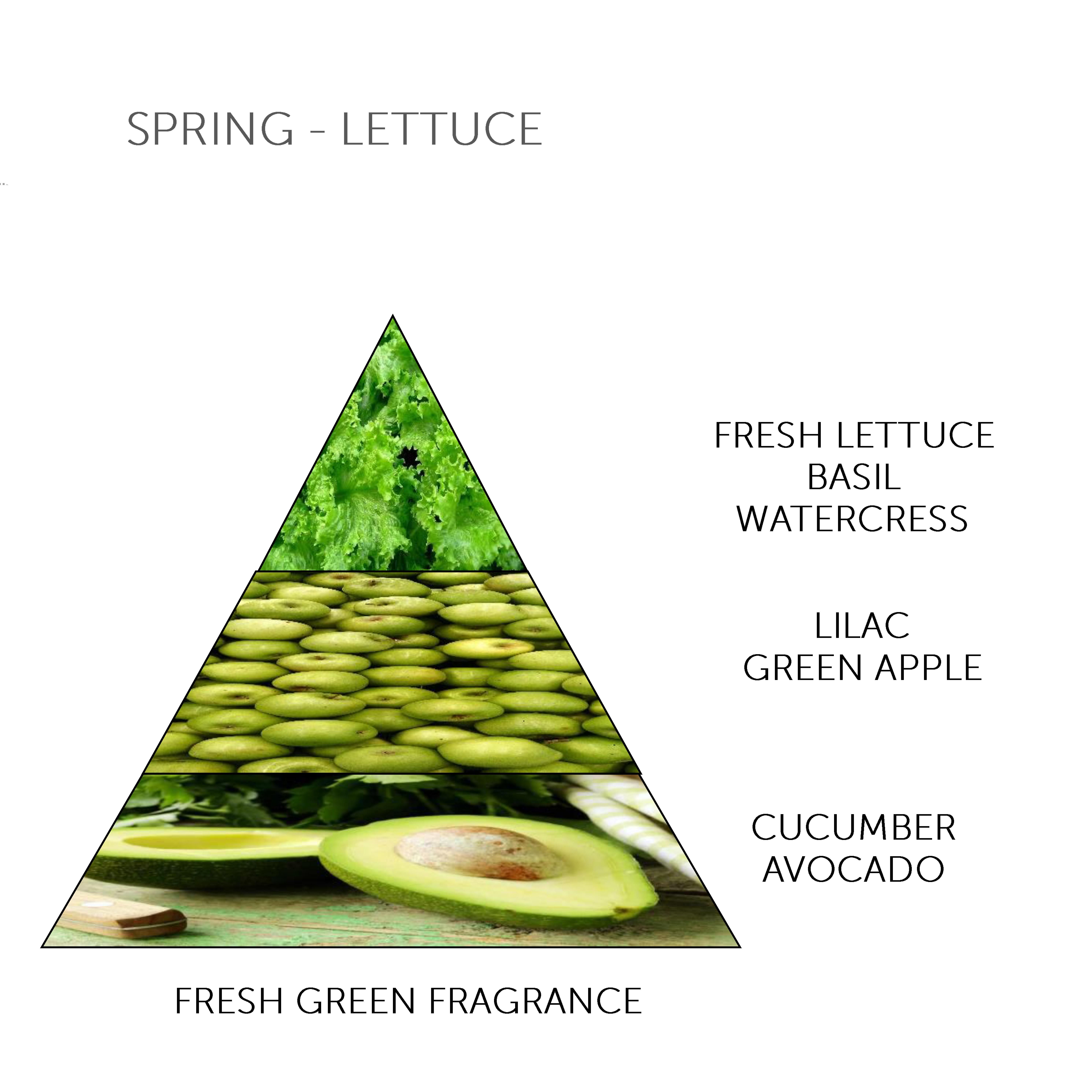 Mini Soap Bar Spring - Lettuce