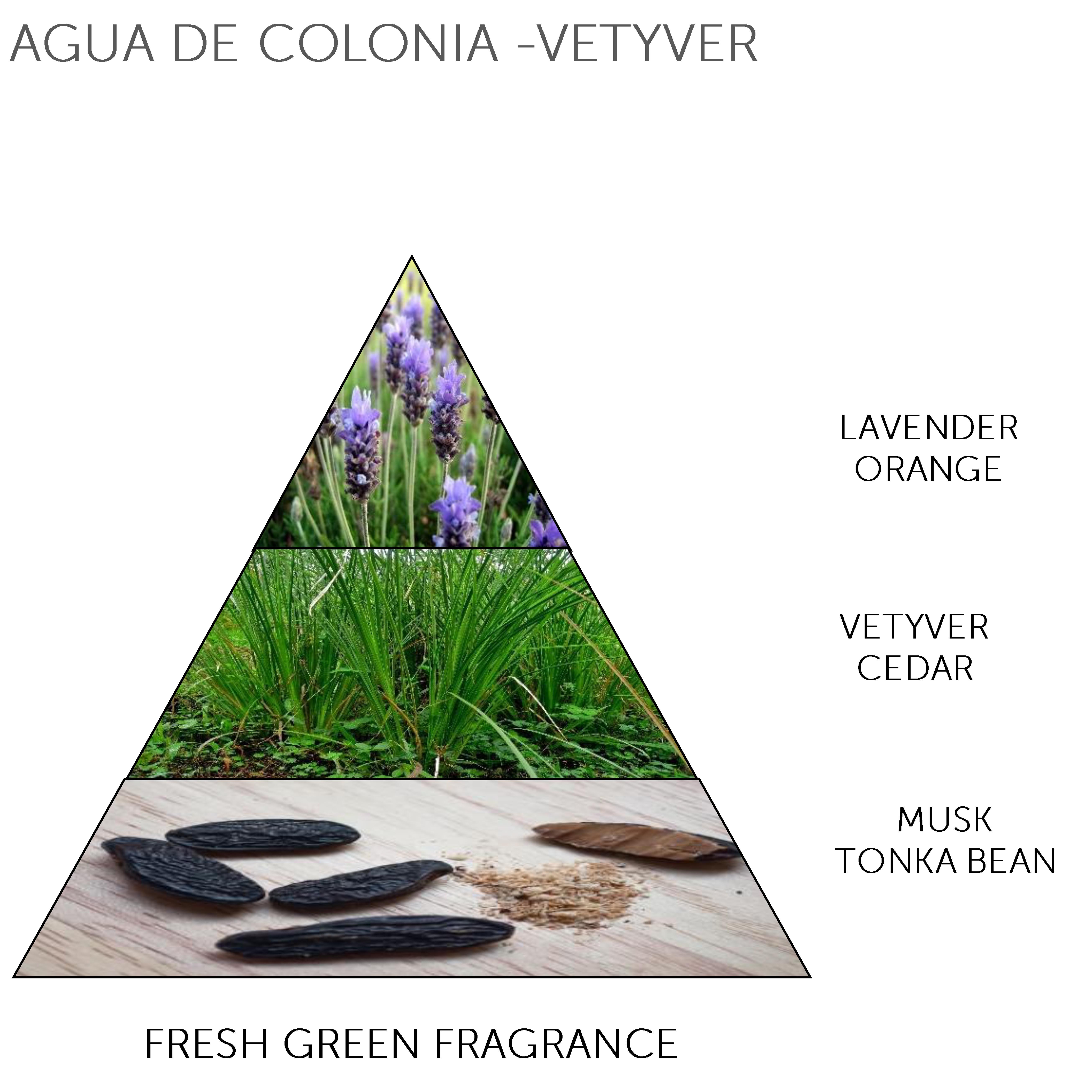 Mini Soap Bar Agua Colonia - Vetyver